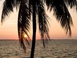 Punta Gorda  Cienfuegos  Cuba  West Indies  Caribbean  Central America