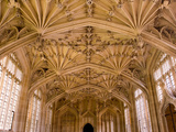 Bodleian Library Interior  Oxford University  Oxford  Oxfordshire  England  United Kingdom  Europe
