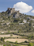 The Cathar Castle of Aguilar in Languedoc-Roussillon  France  Europe