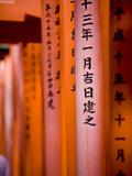 Vermillion Torii Gates  Fushimi-Inari Taisha  Kyoto  Japan  Asia