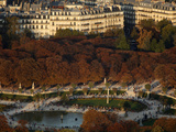 Aerial View of the Luxembourg Garden  Paris  France  Europe