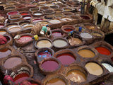Men at Work in the Tanneries  Medina  Fez  Morocco  North Africa  Africa