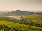 Dawn Light Starts to Fill the Skies Above the Village and Vineyards of Sanerre  Cher  Loire Valley