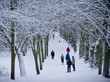 Hampstead Heath in Winter  North London  England  United Kingdom  Europe
