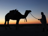 Camel Driver at Dusk in the Sahara Desert  Near Douz  Kebili  Tunisia  North Africa  Africa