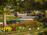 People Walking Through the Jardins Botanique (Botanical Gardens)  Tours  Indre Et Loire  Centre  Fr