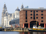Royal Liver Building and Albert Docks  UNESCO World Heritage Site  Liverpool  Merseyside  England