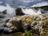 Whakarewarewa Thermal Reserve  North Island  New Zealand  Pacific