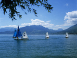 Sailing Dinghies  Annecy  Lake Annecy  Rhone Alpes  France  Europe