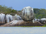 Rock Formation with Crocodiles and Cormorants at Kumana National Park  Formerly Yala East  Kumana