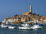 Old Town and St Euphemia's Church  Rovinj  Istria  Croatia  Adriatic  Europe