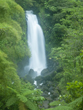 Trafalgar Falls  Roseau Valley  Morne Trois Pitons National Park  UNESCO World Heritage Site  Domin
