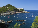 View over Bay  Sa Tuna  Near Begur  Costa Brava  Catalonia  Spain  Mediterranean  Europe