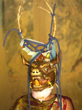 Buddhist Monk in His Colourful Costume and Antelope Mask Waiting During Gangtey Tsechu at Gangte Go