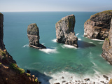 The Elegug Sea Stacks  Pembrokeshire  Wales  United Kingdom  Europe