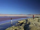 Laguna Colorada (Red Lagoon)  Salt Lake in the SW of the Altiplano of Bolivia  Eduardo Avaroa Andea