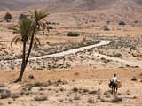 Boy on a Donkey in a Parched Landscape  Gabes  Tunisia  North Africa  Africa