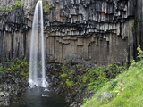 Svartifoss Waterfall  Skaftafell National Park  Iceland  Polar Regions