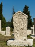 Stecak Necropolis of Radimlja  Located Near Stolac  Bosnia and Herzegovina  Europe