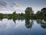 An Almost Mirror Reflection in the River Cher Near Villefranche-Sur-Cher  Centre  France  Europe