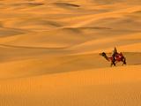Sam Sand Dunes  Rajasthan  India  Asia