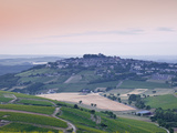 Looking across the Vineyards of Sancerre  Cher  Loire Valley  Centre  France  Europe