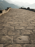 Animal Print in the Road  Great Wall of China  UNESCO World Heritage Site  Huanghua Cheng (Yellow F