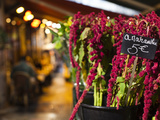 Left Bank Flower Shop  Rue De Buci  Paris  France  Usa