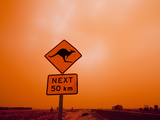 Kangaroo Crossing Road Sign  Outback Dust Storm  Rural Highway  Ivanhoe  New South Wales  Australia