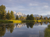 Teton Mountain Reflect in Snake River  Scwabacher Landing  Grand Teton National Park  Wyoming  Usa