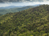 Scenic of Blue Ridge Mountains  Northern Georgia  Usa