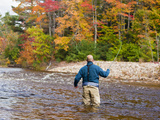 A Man Fly-Fishing on the Swift River in Albany  White Mountains  New Hampshire  Usa