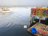 Lobster Traps and Boats in Morning Fog  Corea  Maine  Usa