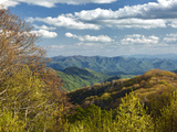 Spring View of Deep Creek Valley  Great Smoky Mountains National Park  North Carolina  Usa