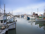 Fishing Boats  Fisherman's Wharf  San Francisco  California  Usa