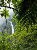 Waterfall in Rainforest Along Fortuna River  La Fortuna  Costa Rica