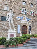 Palazzo Vecchio Entrance with Copy of Michaelangelo's Statue of David  Florence  Tuscany  Italy