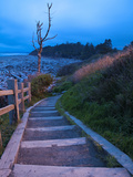 Beautiful Beach Area at Dusk  Kalaloch Lodge on the Olympic Coast  Washington  Usa
