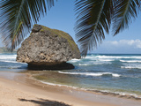 Bathsheba Beach Barbados  Caribbean