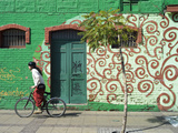 Man Riding Bicycle  Painted Wall  Barrio Bellavista  Santiago  Chile