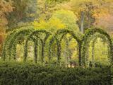 Autumn View of Longwood Gardens  Pennsylvania  Usa