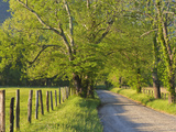 Sparks Lane  Cades Cove  Great Smoky Mountains National Park  Tennessee  Usa