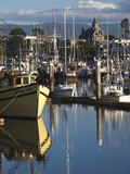 Woodley Island Marina  Eureka  North Coast  Northern California  Usa