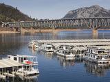 Houseboats on Shasta Lake  Whiskeytown-Shasta-Trinity National Recreation Area  California  Usa
