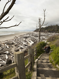 Beautiful Beach Area at Kalaloch Lodge on the Olympic Coast  Washington  Usa