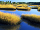 Salt Marsh at Sunrise  Estuary of New Meadow River in Early Autumn  Maine  Usa