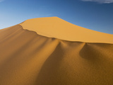 Coral Pink Sand Dunes State Park  Utah  Usa