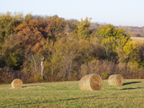 Hay Bales  Dubuque County  Iowa  Usa
