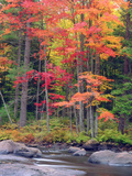 Autumn in the Adirondack Mountains  New York  Usa