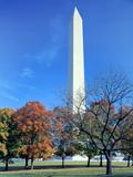 Washington Monument Rises Above Maple Trees in Autumn  National Mall  Washington DC  Usa